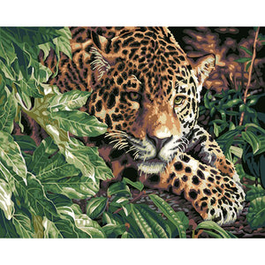 Hiding Leopard Frameless DIY Acrylic Paint By Numbers Kit 40x50cm