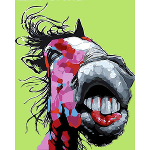 Abstract Donkey Frameless DIY Acrylic Paint By Numbers Kit 40x50cm