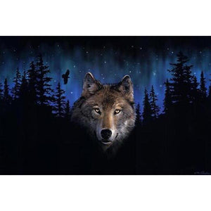 Wolf and Forest Frameless DIY Acrylic Paint By Numbers Kit 40x50cm