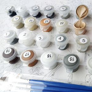 Custom DIY Paint By Numbers Kit