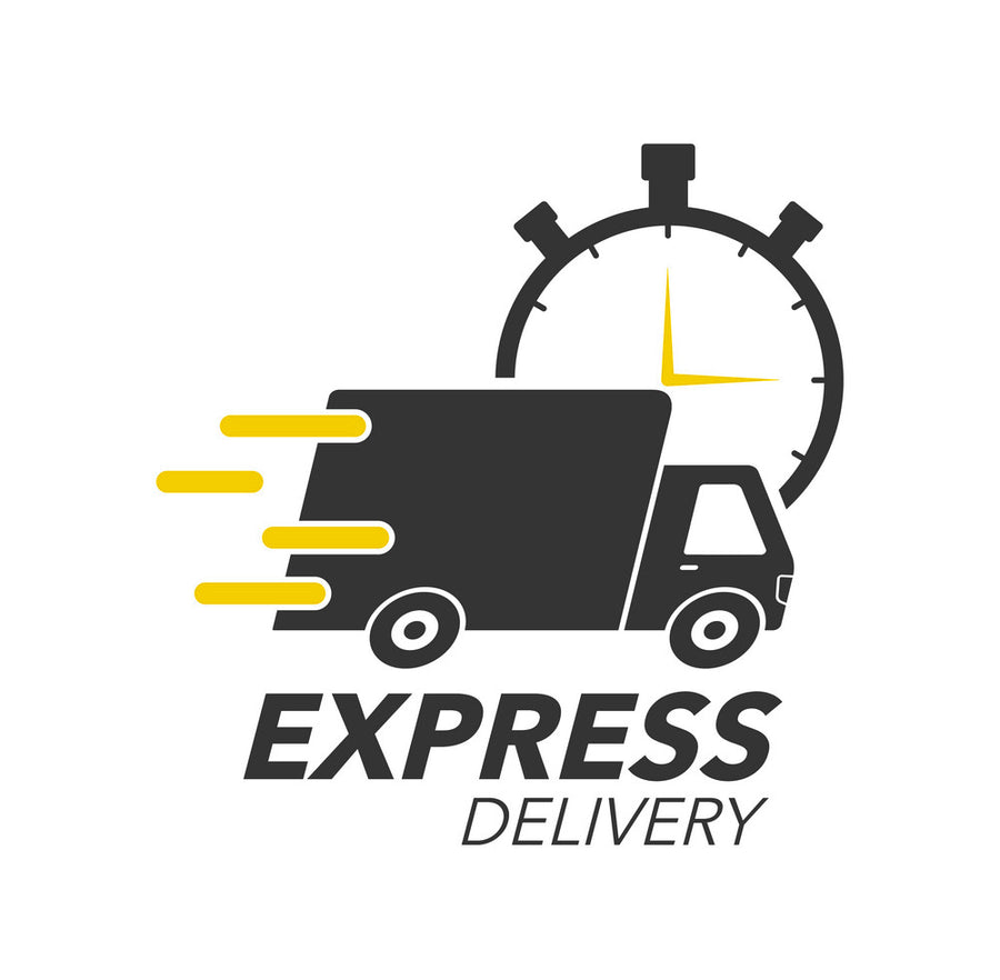 Express Delivery to USA