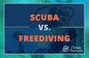 Scuba Vs. Freediving