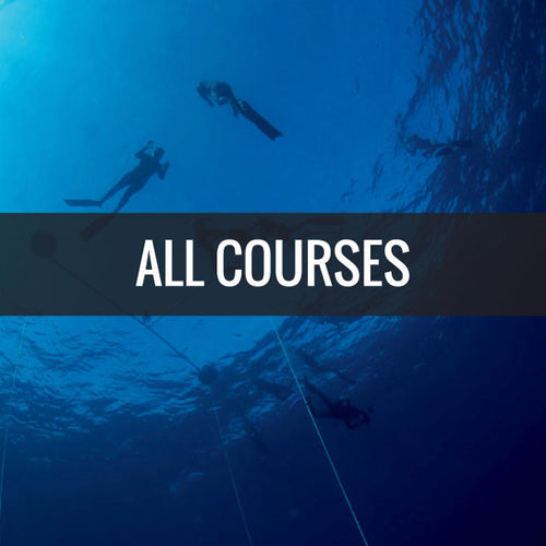 Freediving Courses offered at Florida Freedivers Level 1 and 2