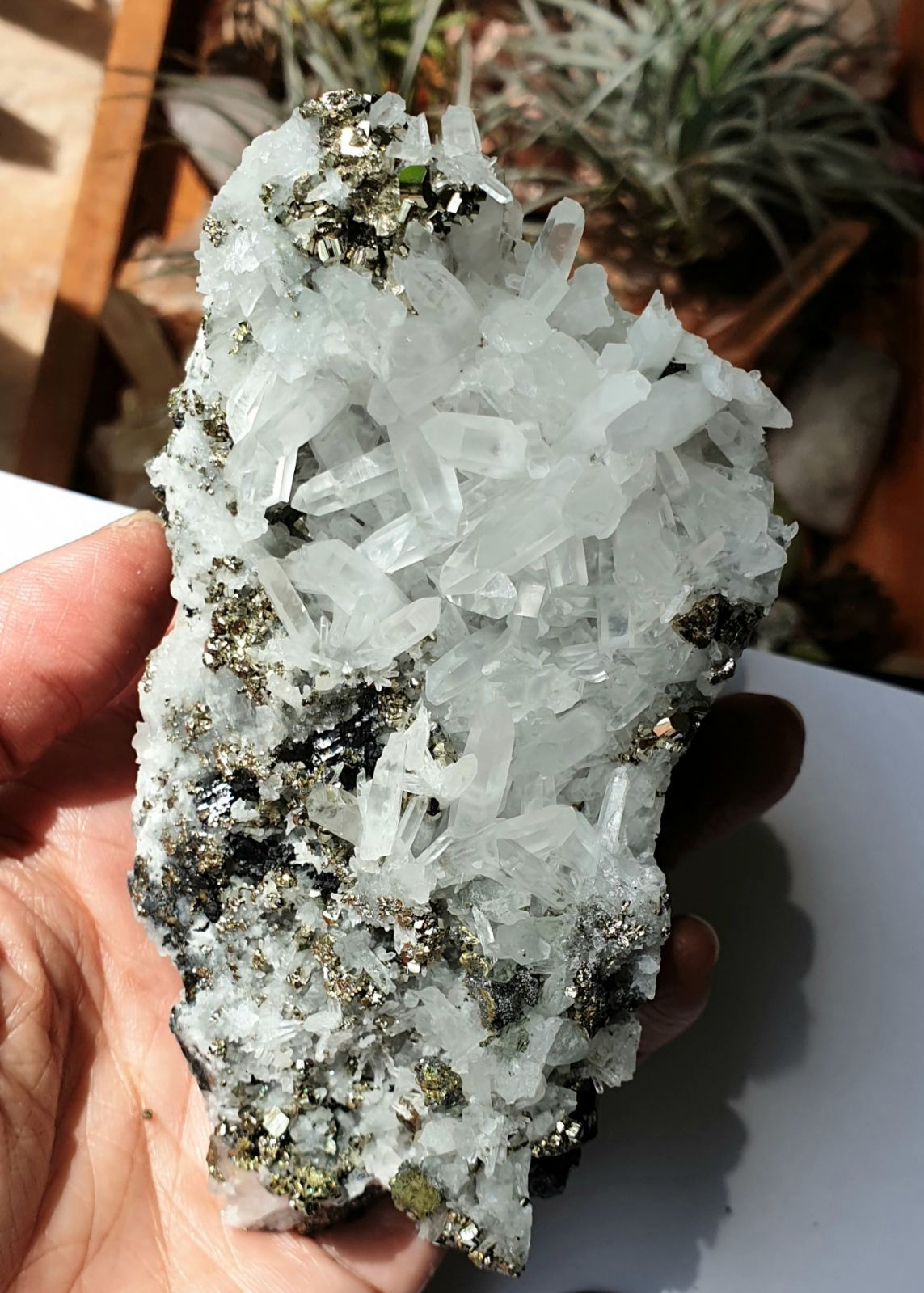 PYR-18: Crystal Quartz with Pyrite Cluster (Huanzala Mine, Peru)