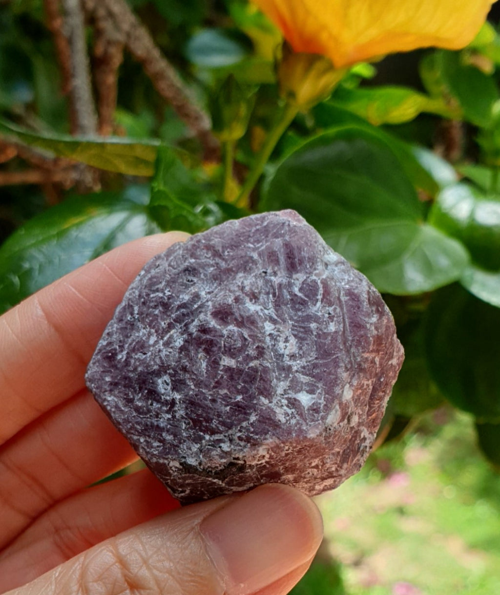 Raw Corundum Ruby Hexagon with Black Tourmaline (naturally formed) RB-05
