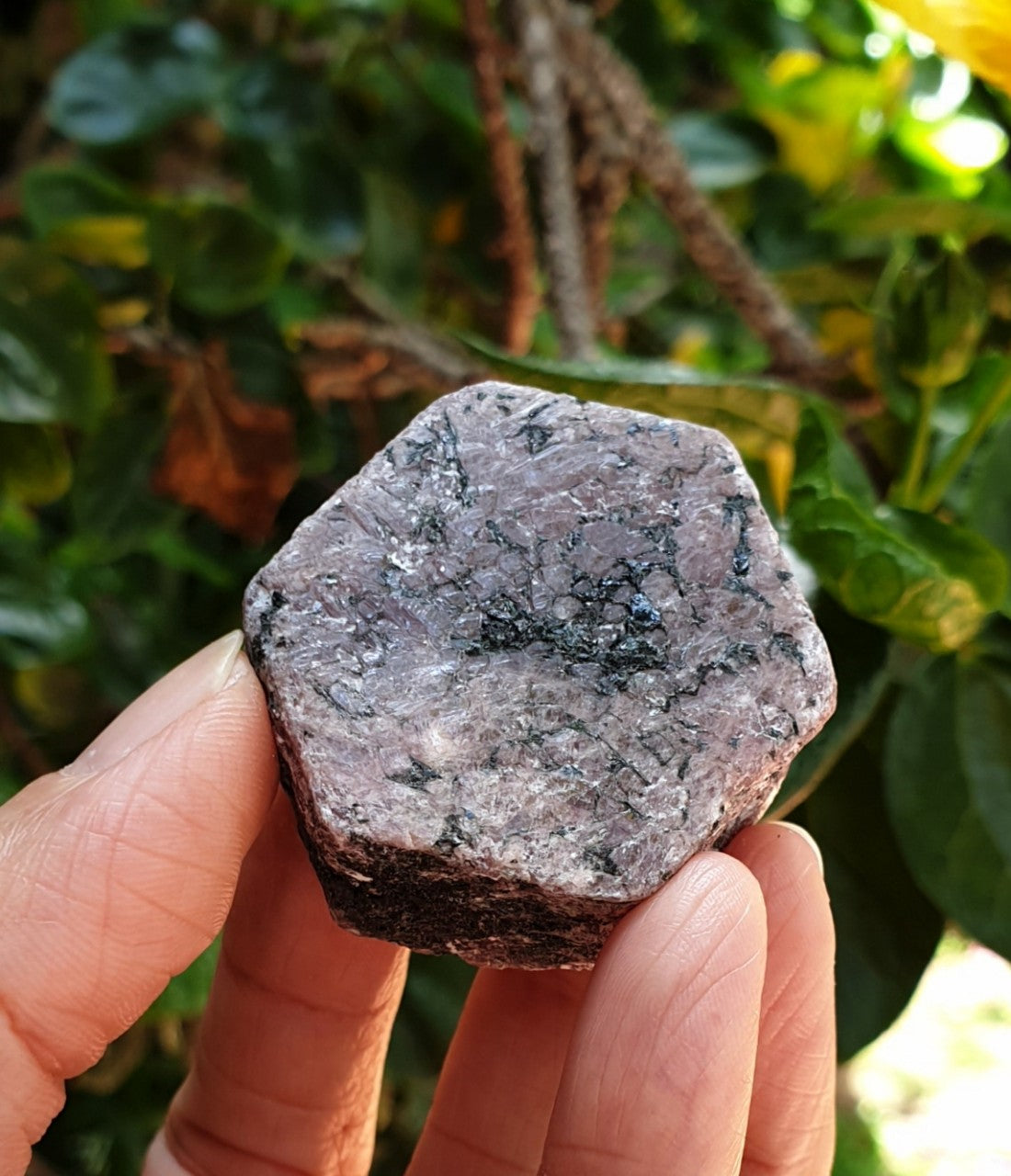 Raw Corundum Ruby Hexagon with Black Tourmaline (naturally formed) RB-06