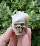 Hand-carved Crystal Quartz skull cluster SK04