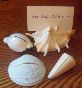 Heirloom Hourglass wedding accessories Sea Shell Place Card Holders -10