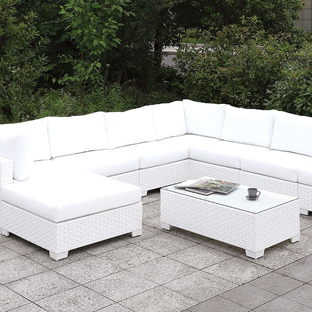 Somani Outdoor Sectional & Coffee Table