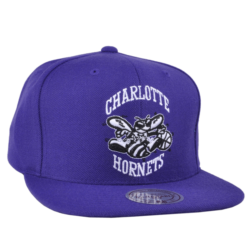 Charlotte Hornets Snapback Hat Purple Hardwood Classic Mitchel and Ness