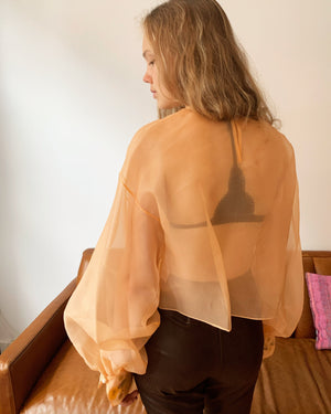 Georgia Peach Claude Silk Organza Top