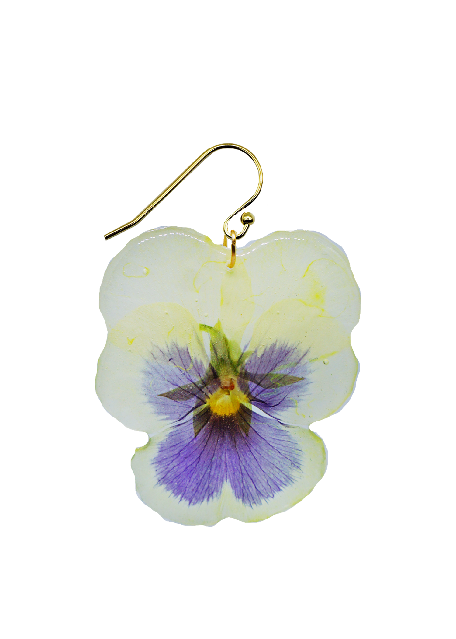 Gloucestershire Pansy