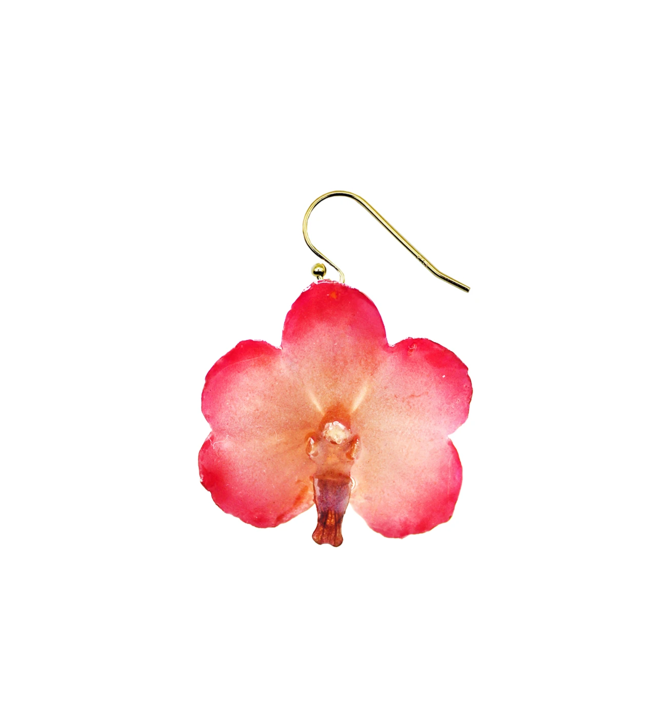 Glow Pink Mini Orchid