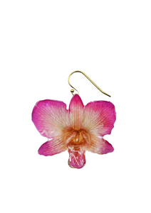 Provencial Orchid