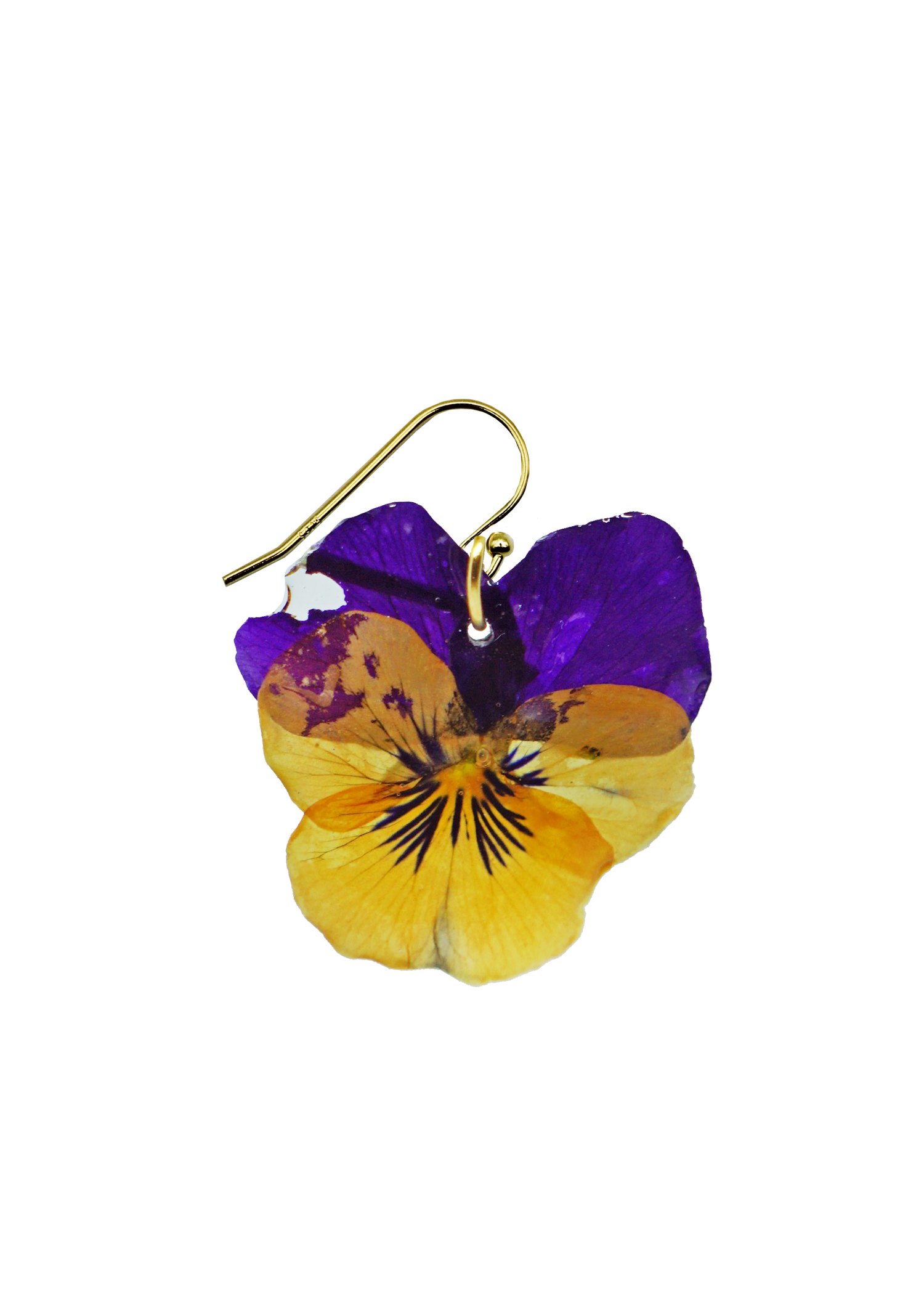 Small Orchard Pansy