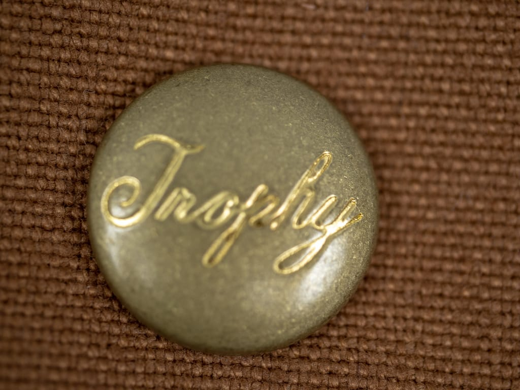 brass customized buttons of Trophy Clothing Oiled Duck Vest