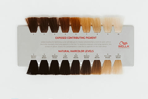natural hair levels swatch card