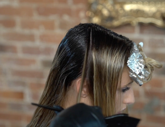 Foil Conversion and Wet Balayage Made EASY!