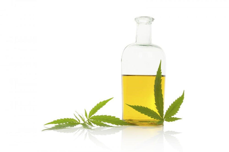 CBD Hemp Oil vs. Hemp Seed Oil: What's the Difference?