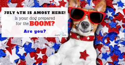 Keep your Pet's Safe this July 4th Holiday