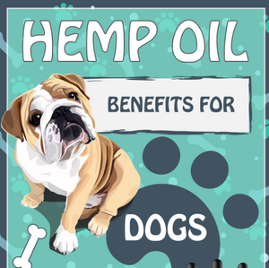 Hemp Oil Benefits For Dogs