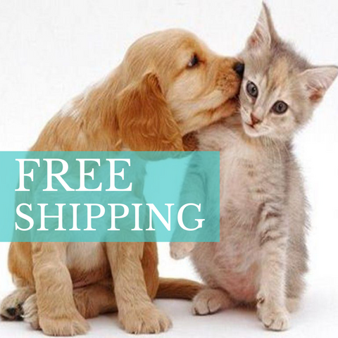 free shipping on all innov8tion orders