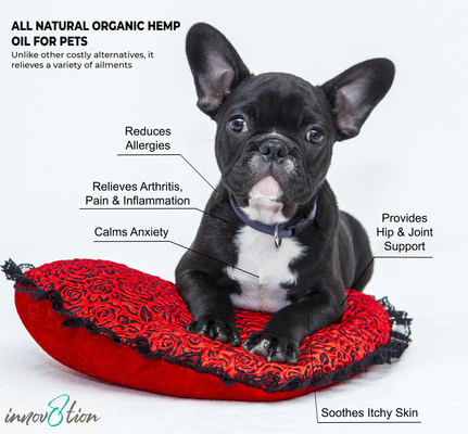 all natural organic hemp oil for pets