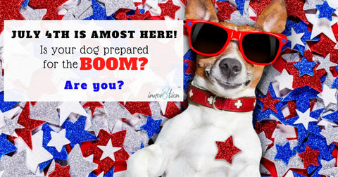 Pup stressed from fireworks? innov8tion hemp derived CBD oil can help!