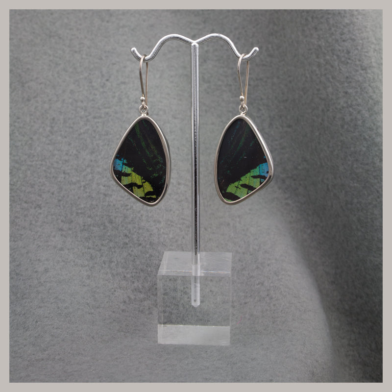 Green and Black Butterfly Wing Earrings