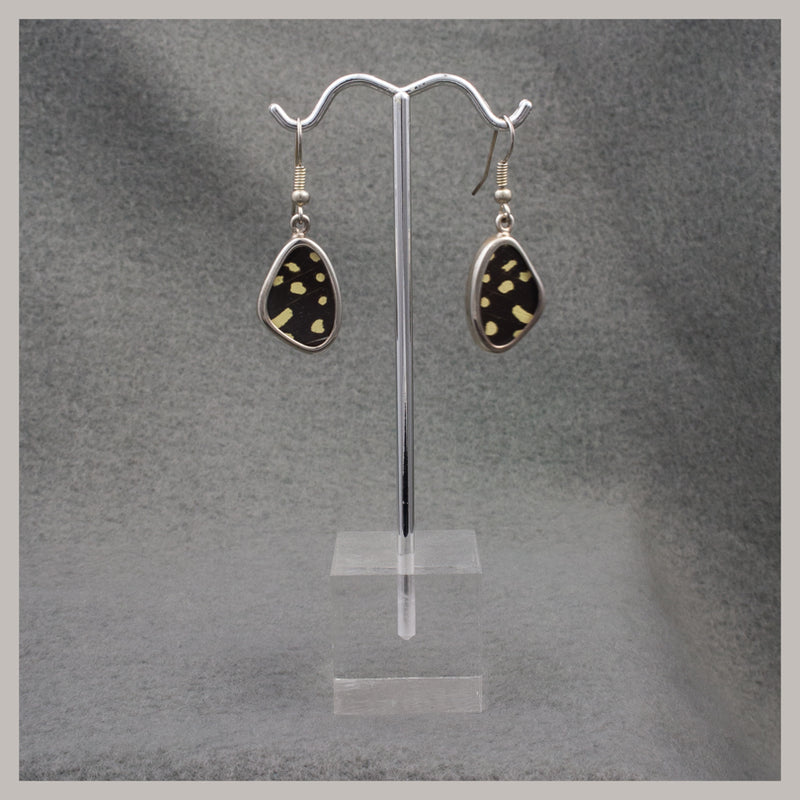 Black and Yellow Butterfly Wing Earrings