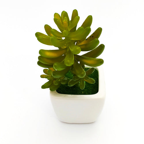 Decor Planter Ceramic Pot