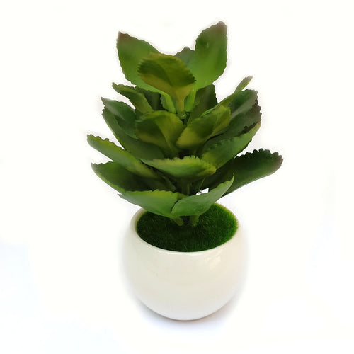Decor Planter Ceramic Pot Big
