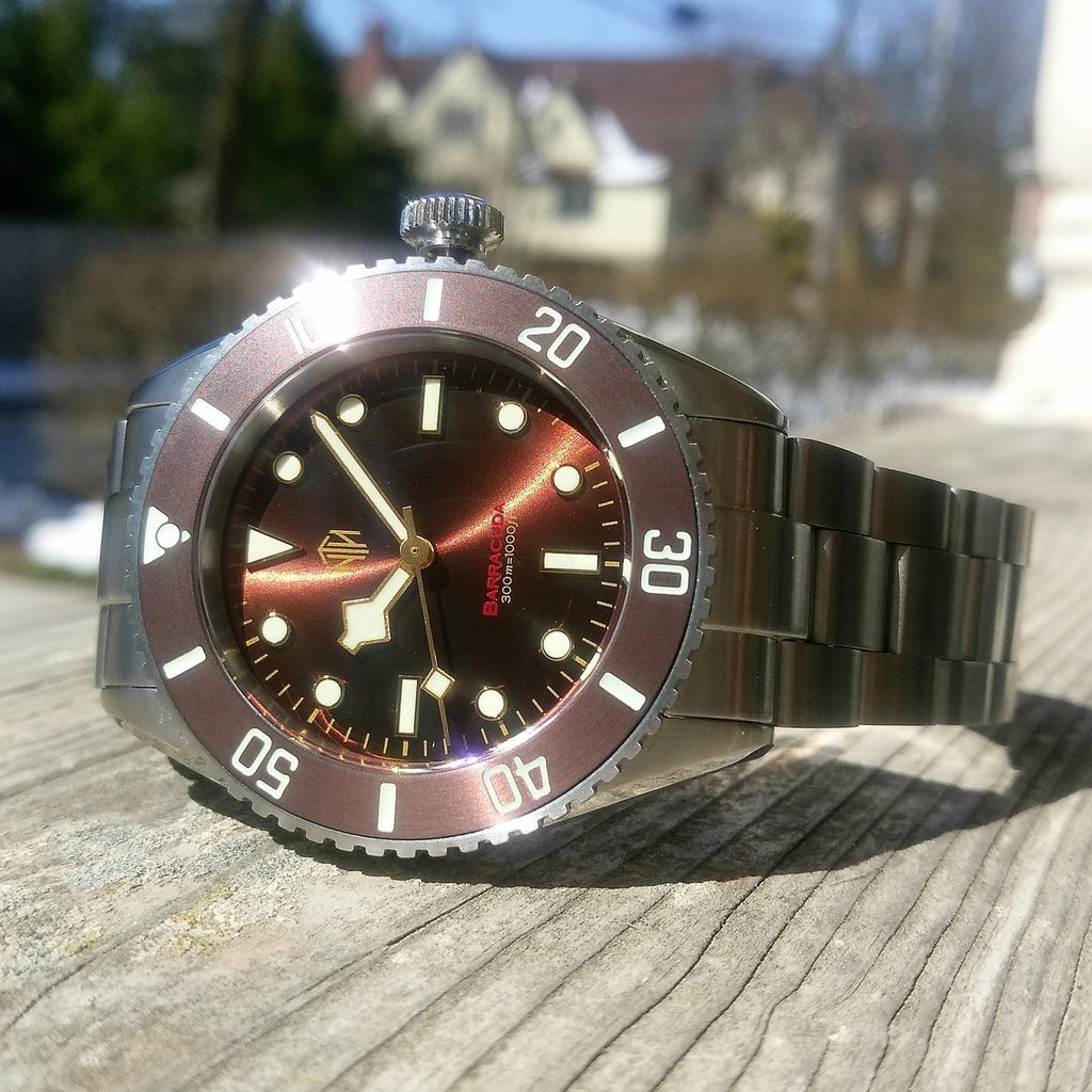 Barracuda - Brown, No Date - NTH Watches