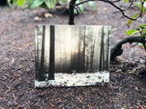 Custom 6x6 Real Wood Print