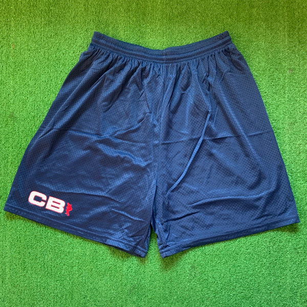 Nike Charles Barkley Blue Mesh Shorts