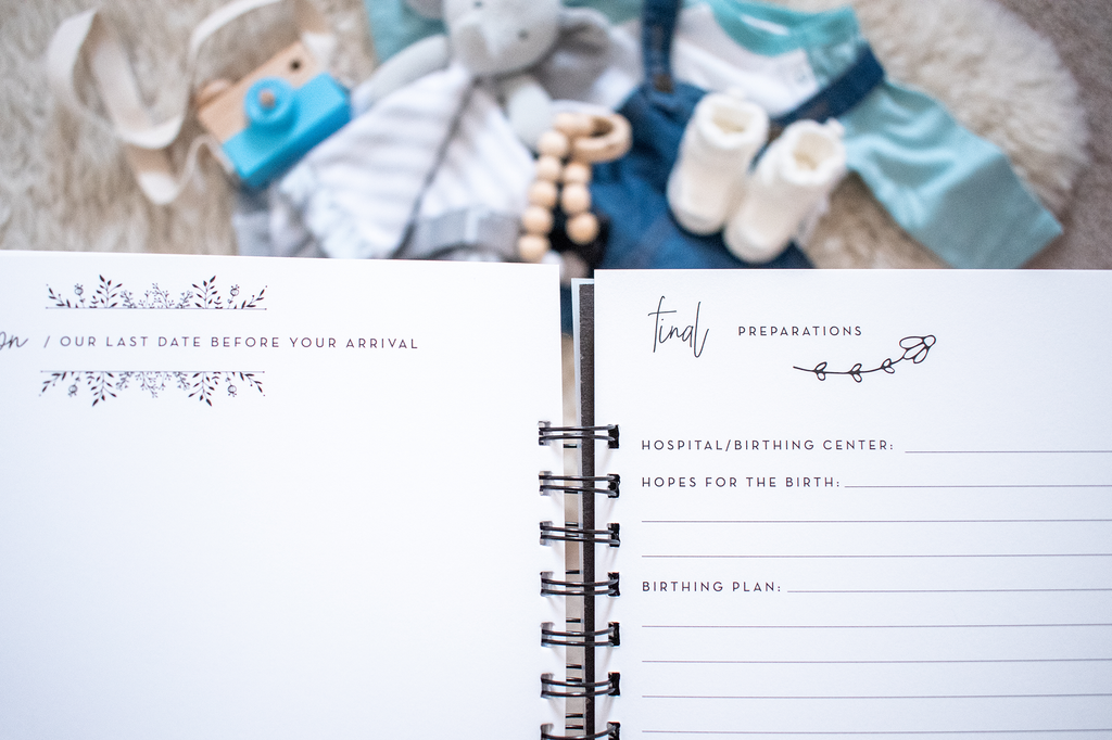 Pregnancy Journal: Minimalist