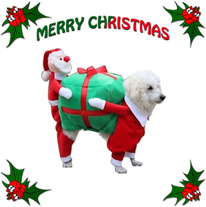 Funny Santa Claus & Gift Dog Costume