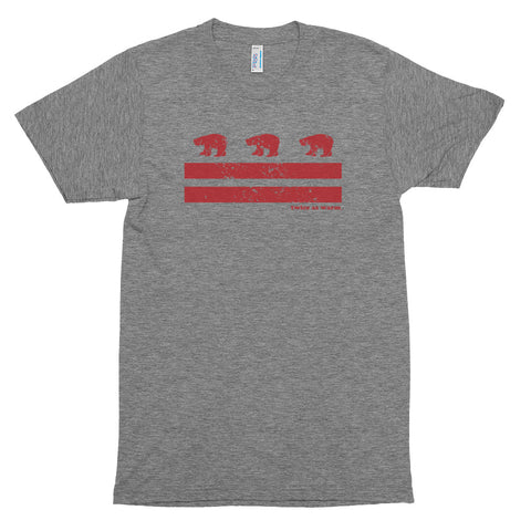 DC Flag Polar Bears vintage t-shirt