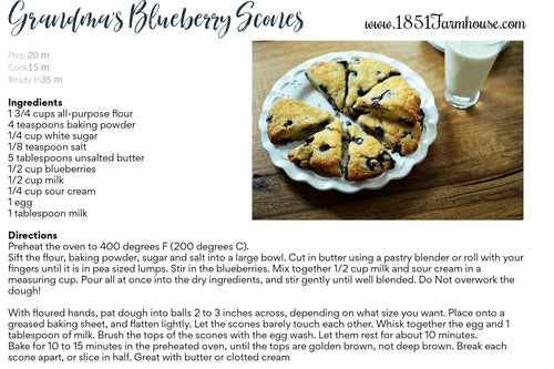 Blueberry Scone recipe