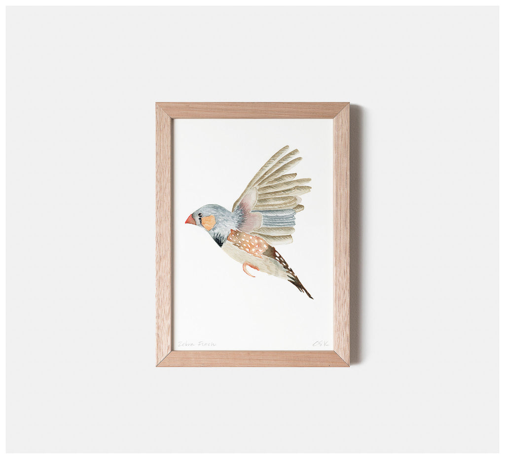 Ink & Spindle - Zebra Finch Watercolour Fine Art Print - Unframed