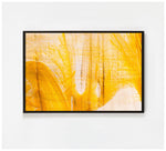 Amorfo Photography - Topography no.2 - Framed