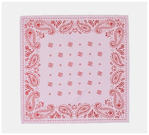 Roch Lola - The Scarf - Modern Paisley - Blush/Red