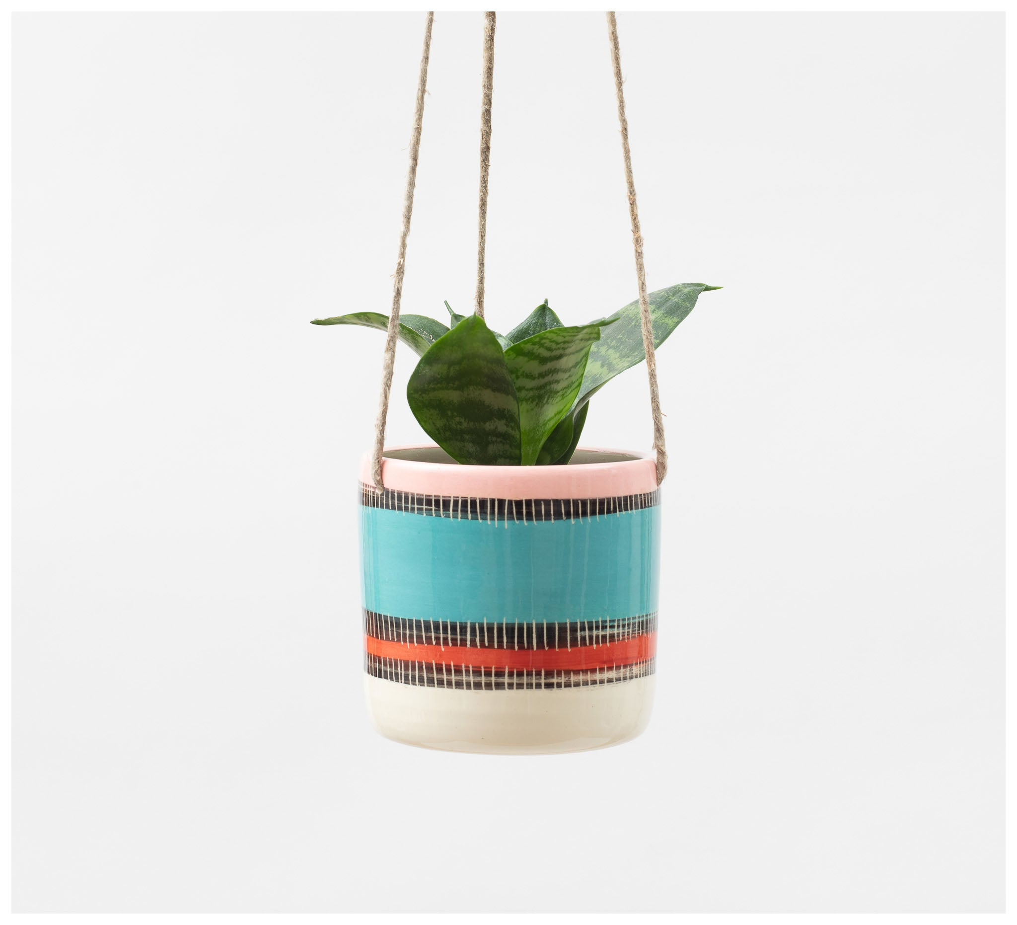 Trade the Mark - Liquorice All Sorts – Hanging Planter