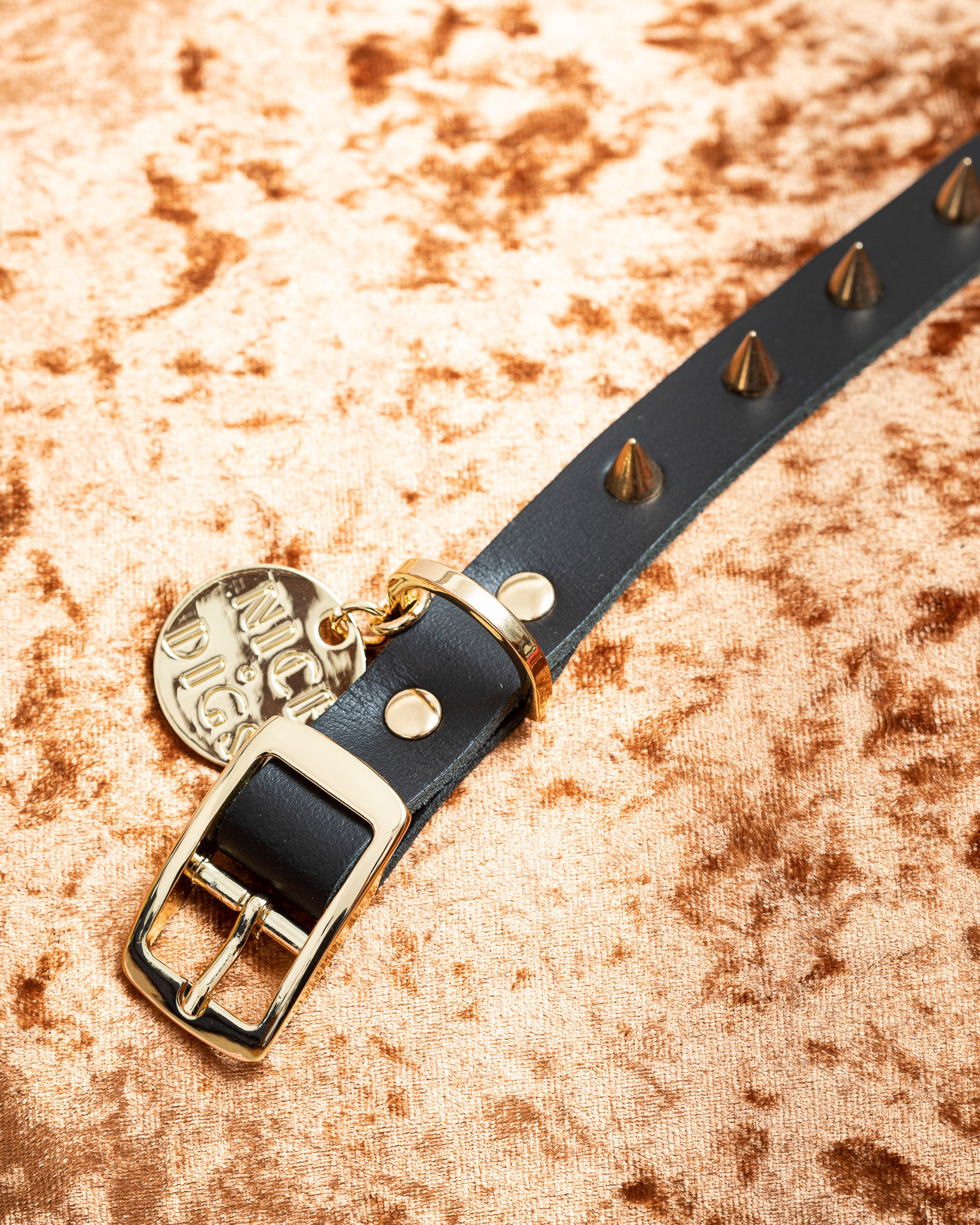 Nice Digs - Spike Gold Noir Collar