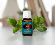 Basil Essential Oil - Young Living