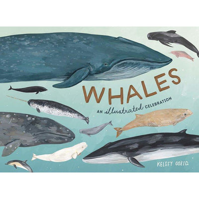 Whales an Illustrated Celebration