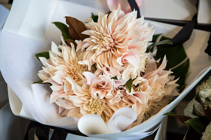 For the Dahlia Flower Lovers