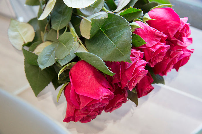Rose Flowers: Why Outer Petal Damage is Normal