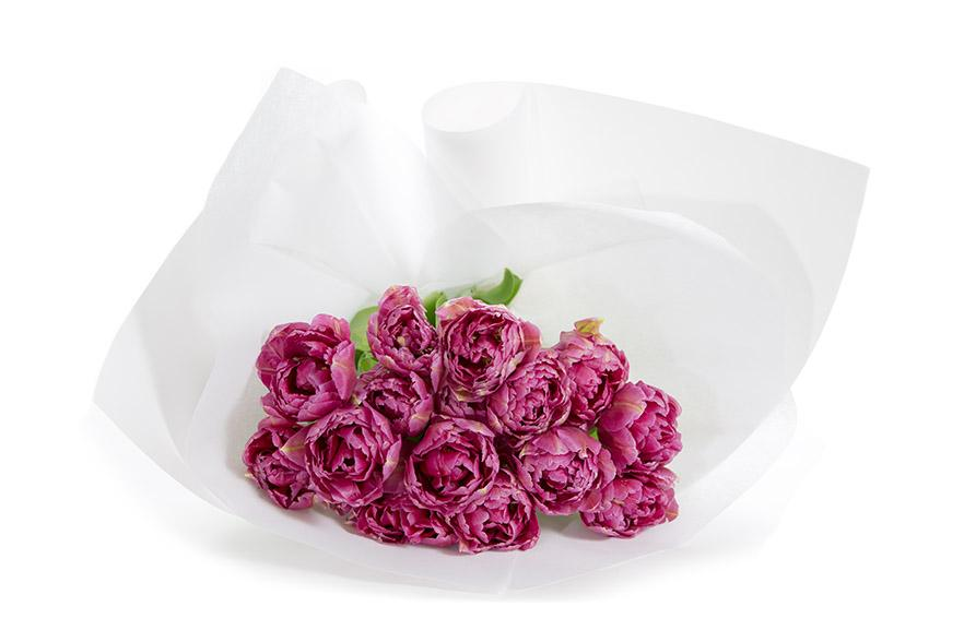 Double tulip bunch in white paper for flower delivery in Melbourne