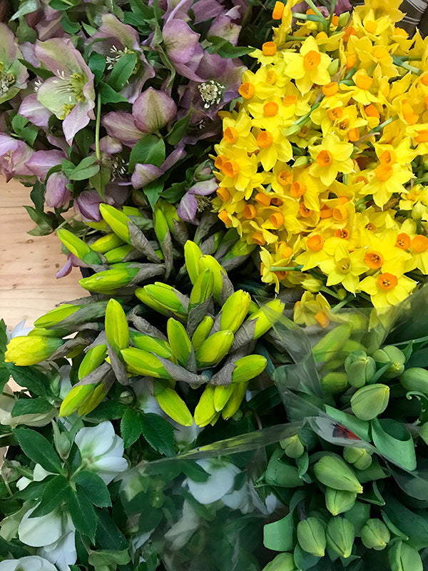 Purple and yellow flowers in Melbourne florist